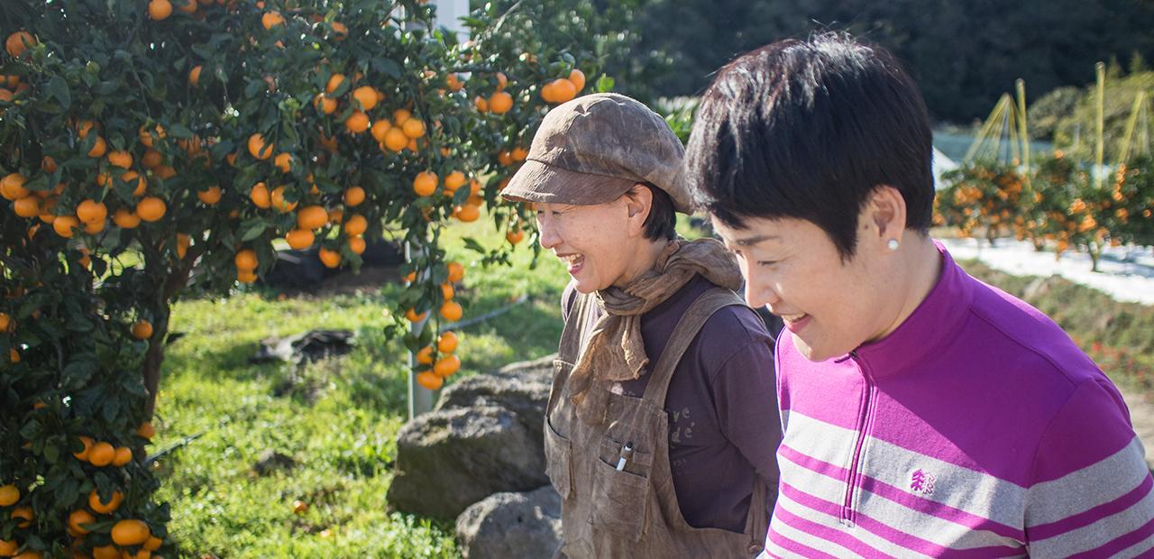 과일 소믈리에가 직접 고른 과일