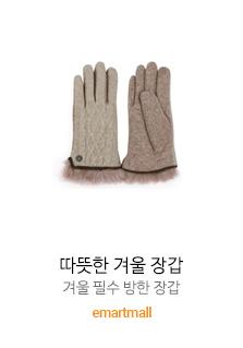 따뜻한 겨울 장갑