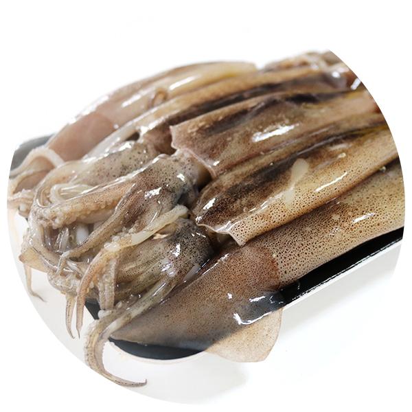 [어부의바다]원양산大총알오징어 2kg(20~40미)