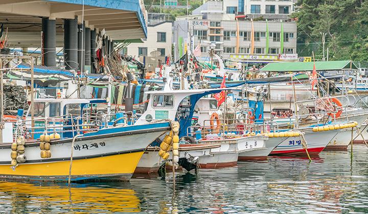 한국의 나폴리라고 불리는 장호항