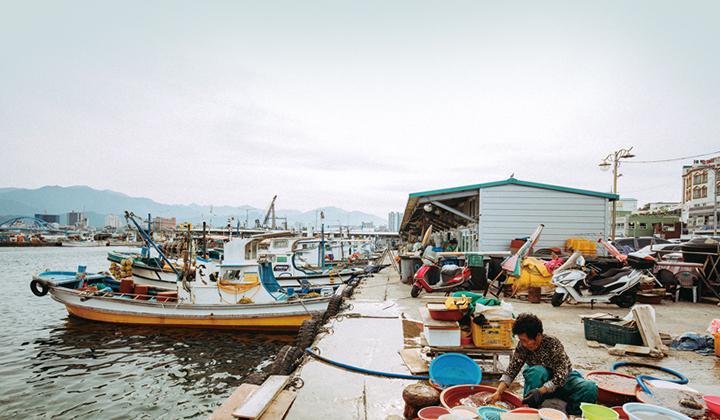 동명항에 고기잡이배가 정박해있다.
