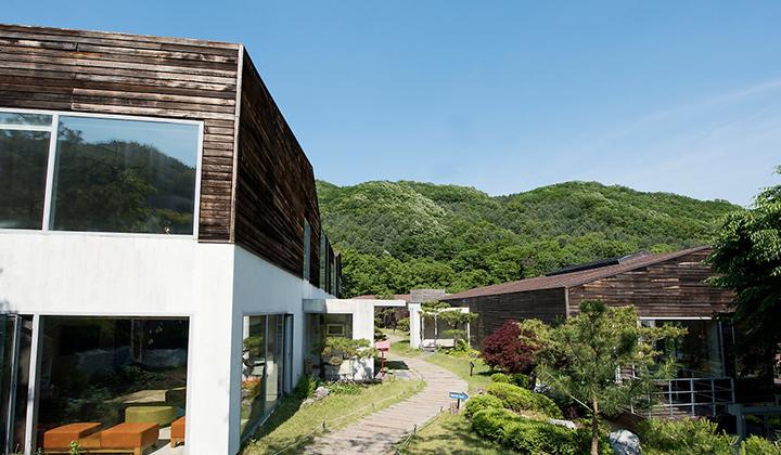 초록색 녹음으로 우거진 힐리언스 선마을의 주변 풍경