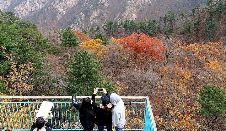 알록달록 화려한 설악산의 가을